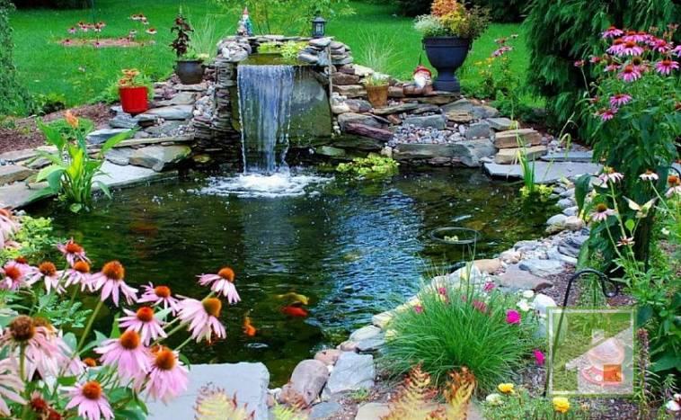 Как красиво оформить пруд на даче
