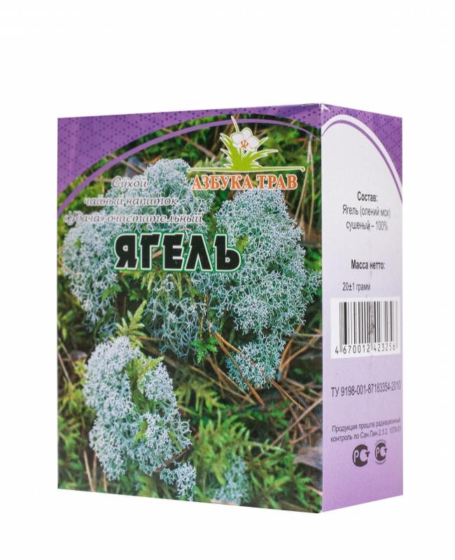Ягель (олений мох) | фото, распространение, описание, полезные свойства, заготовка и хранение