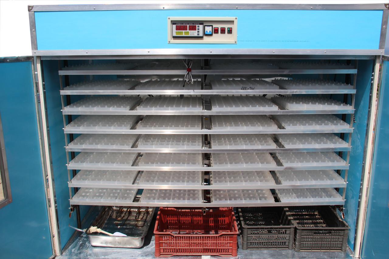 Что такое инкубатор для яиц?