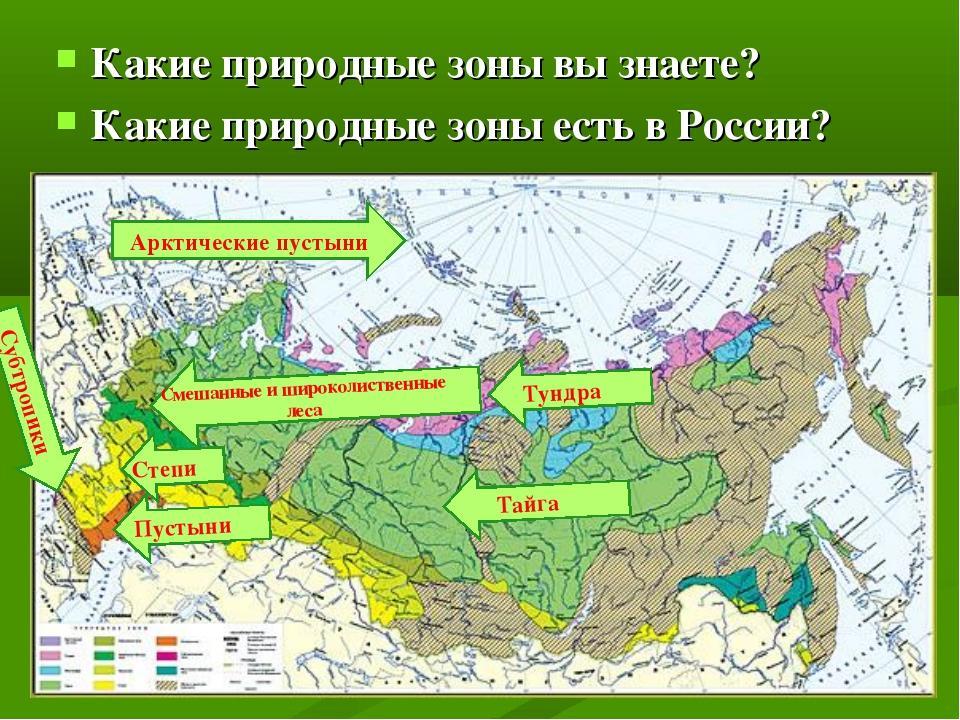 Природные зоны россии (8 класс), основные, преобладающие и характерные зоны нашей страны