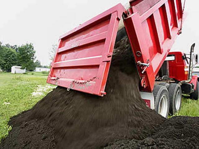 Чернозем (черноземные почвы) - отличие, плодородность