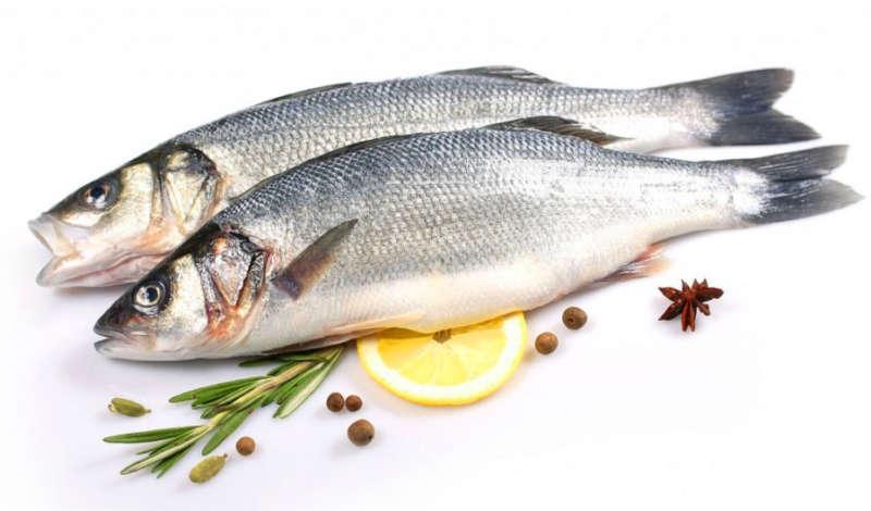 Рыба сибас – цена в россии, общее описание, калорийность и полезные свойства.