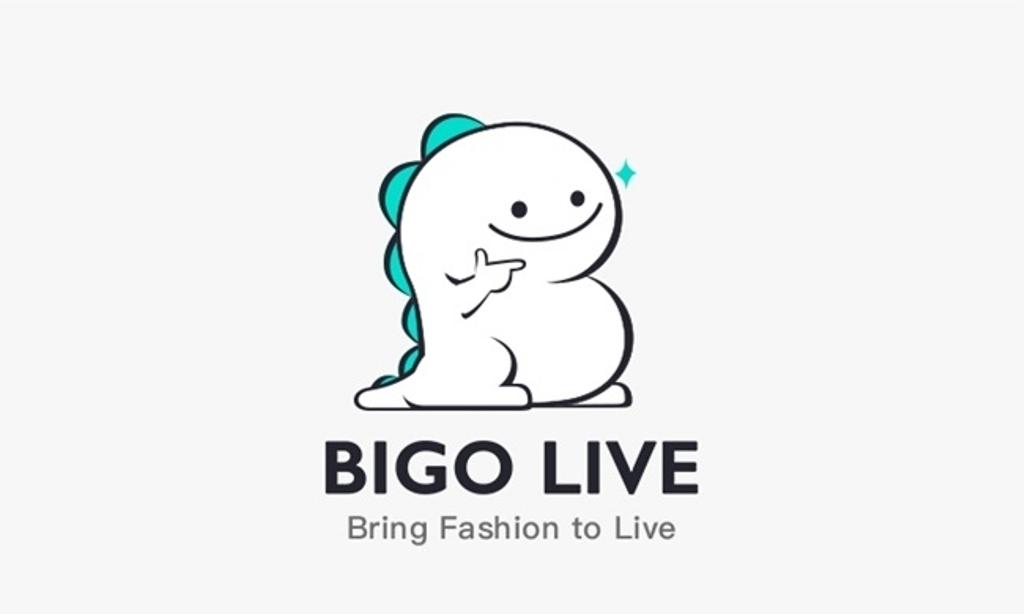 Как пользоваться bigo live-пошаговая инструкция