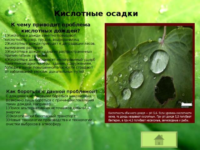Чем опасны кислотные дожди? - other