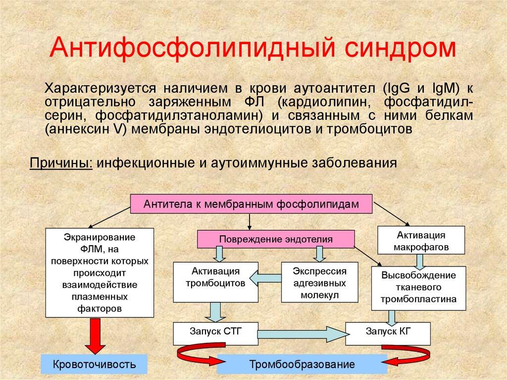 Антифосфолипидный синдром, причины возникновения у беременных, лечение