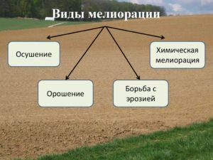 Мелиорация земель и почв : виды описание фото