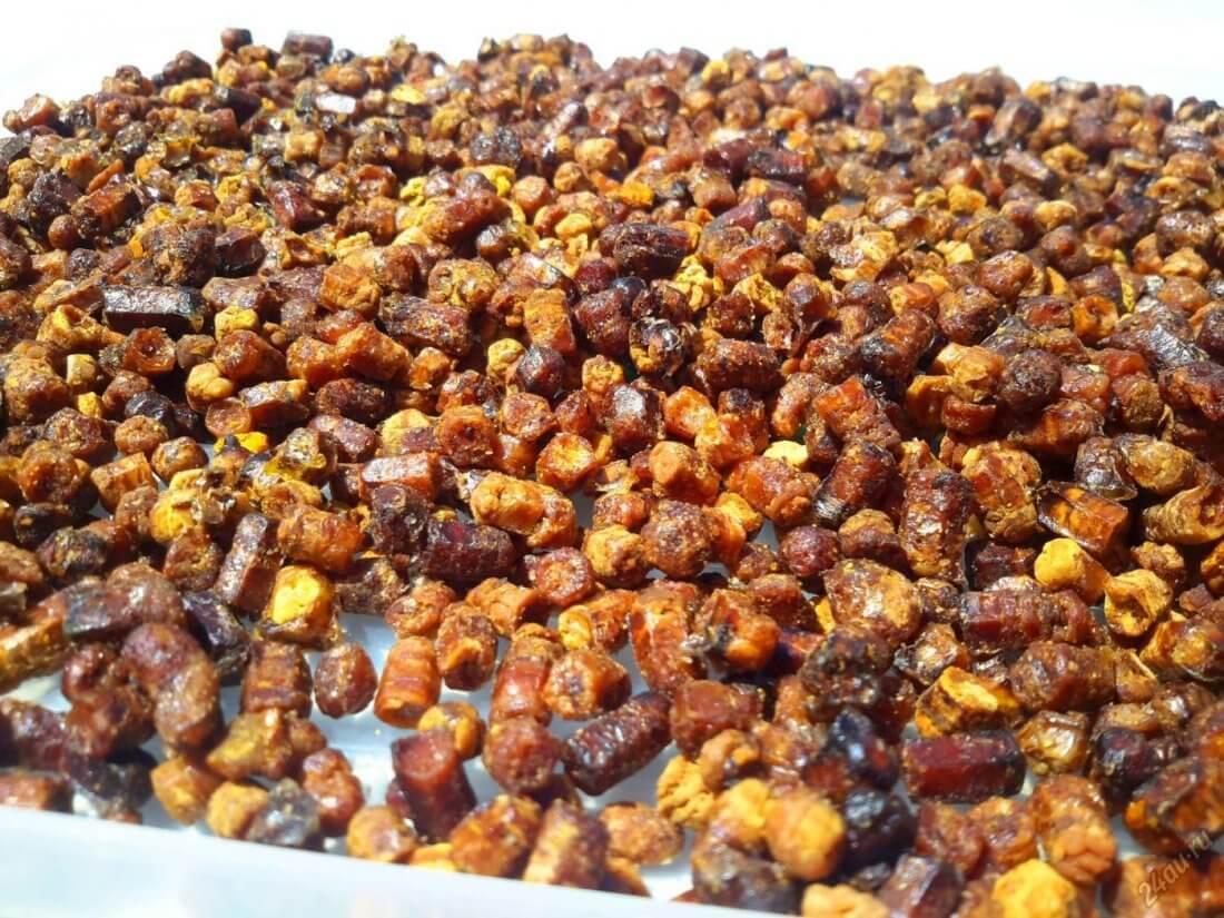 Пчелиная перга – чем полезна, как ее правильно принимать и хранить?