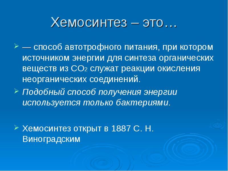 Хемосинтетики: примеры бактерий