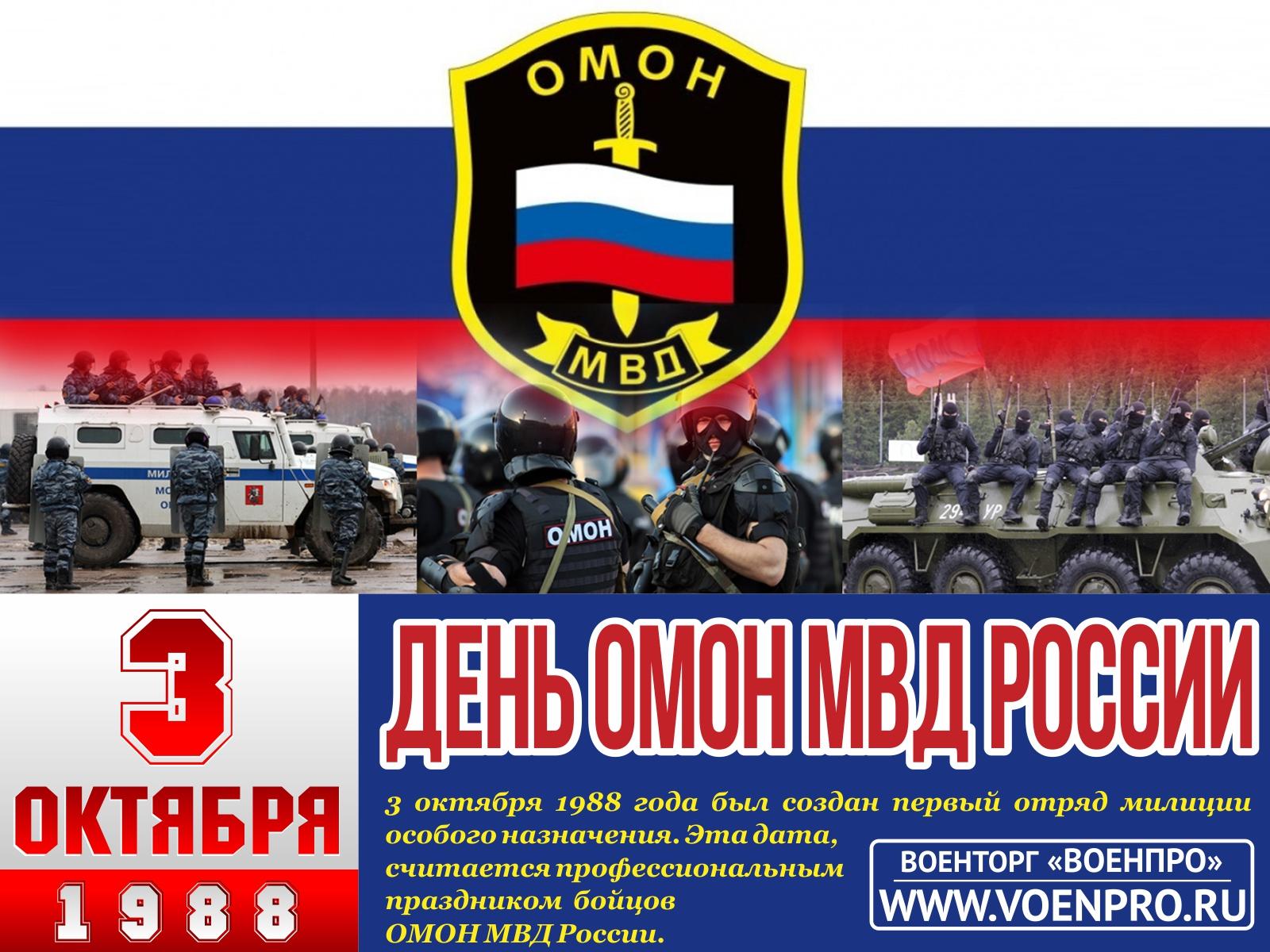 Омон (россия) — википедия. что такое омон (россия)