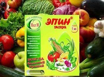 Эпин для растений: инструкция для замачивания семян и применение для рассады и комнатных цветов