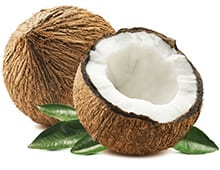 Кокос - польза и вред для организма мужчины и женщины