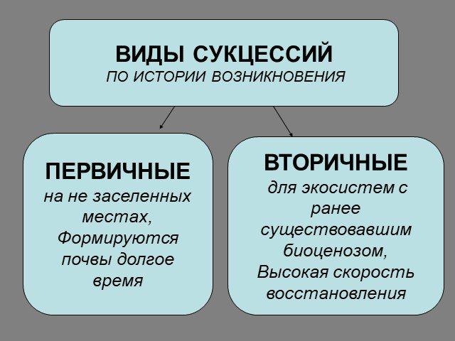 Сукцессия