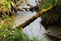 Что такое речной бассейн, водосбор и водораздел определение понятий