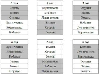 Пять способов севооборота для дачного участка. таблицы севооборота овощных культур — ботаничка.ru