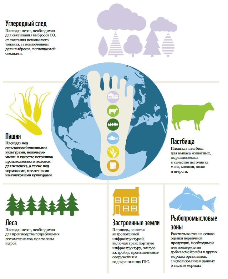 Экологический след | наука | fandom