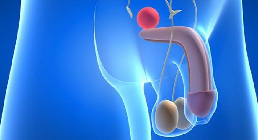 Как происходит мужская эякуляция и что это такое