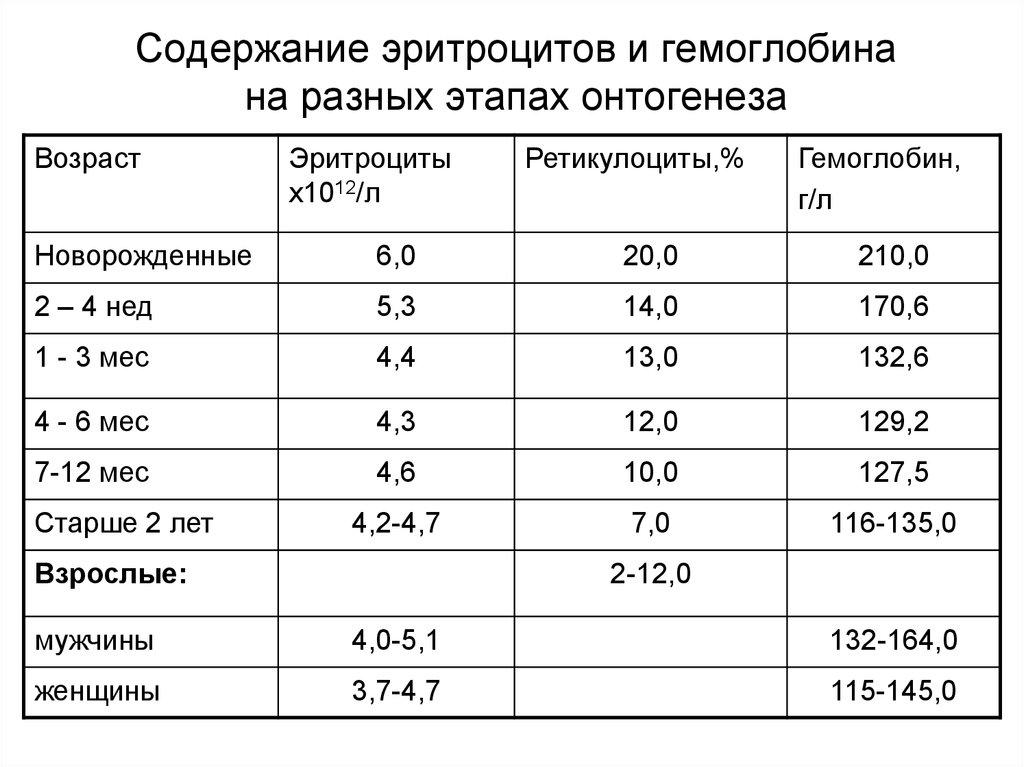 Уровень ретикулоцитов в анализе крови