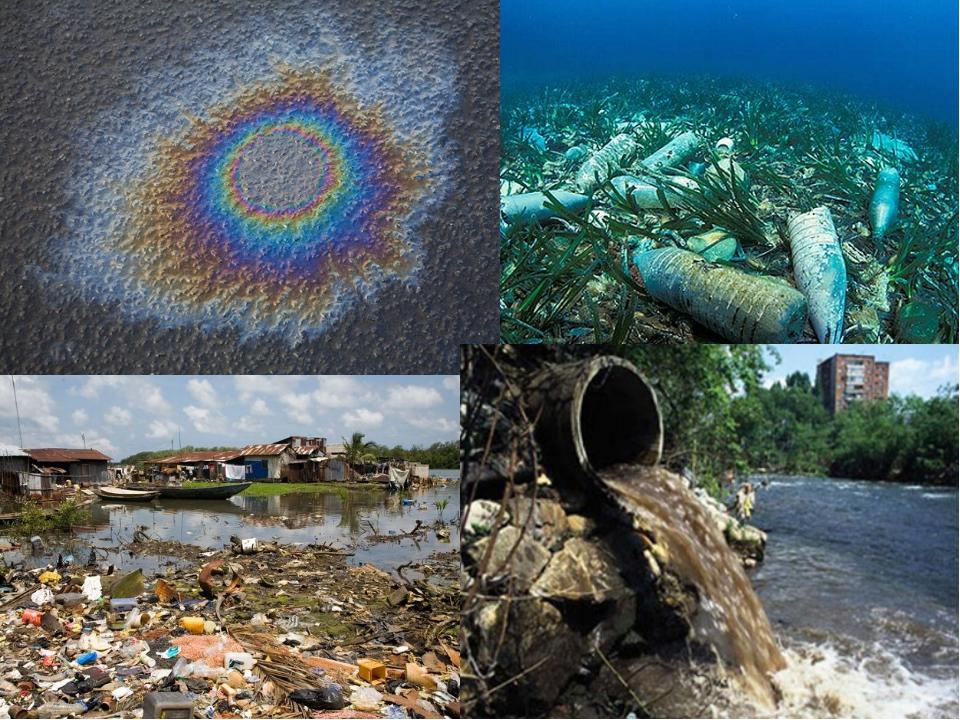 Загрязнение и охрана окружающей среды: понятия и пути решения проблемы