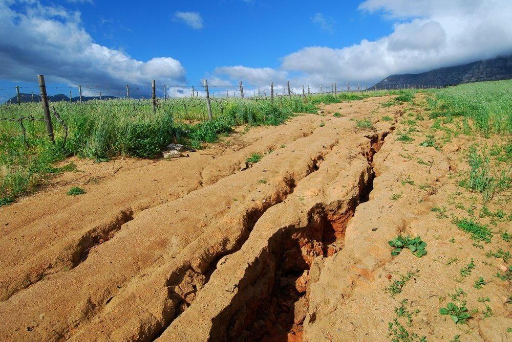 Эрозия почвы: что это такое, её причины и способы борьбы с ней