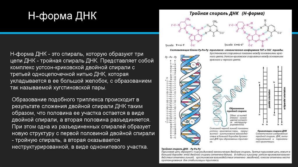 Что такое тест днк, как его делают и для чего он нужен? - hi-news.ru