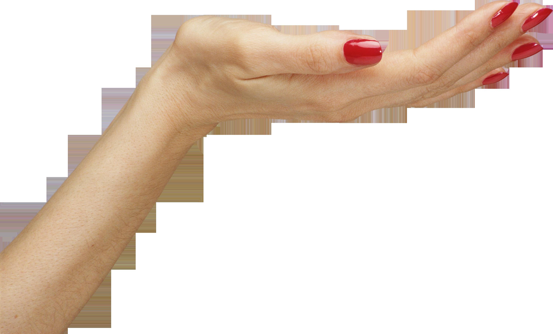 Рука что это? значение слова рука