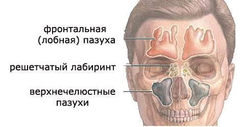 Этмоидит — что это такое, симптомы и лечение у взрослых - пульманолог