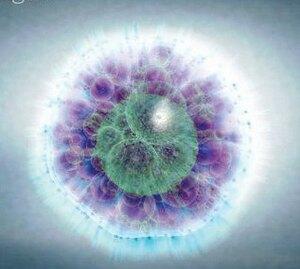 """Что такое партеногенез и для кого он характерен? — журнал """"рутвет"""""""