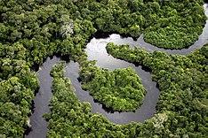 Что такое река? части реки и их определения