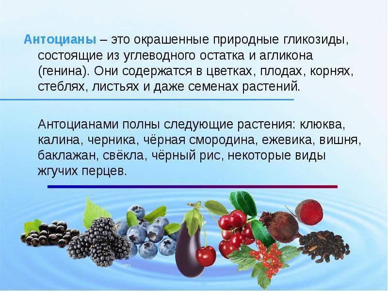 Антоцианы в продуктах - польза для здоровья