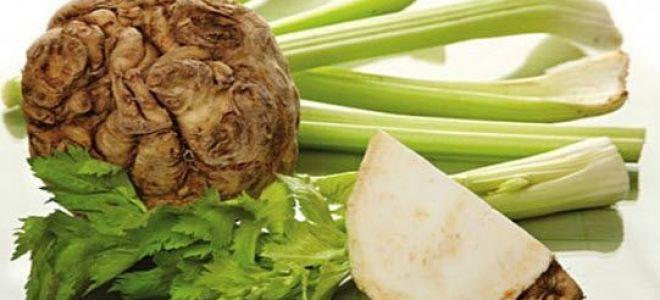 Всё о сельдерее: полезные свойства и применение в кулинарии, фото