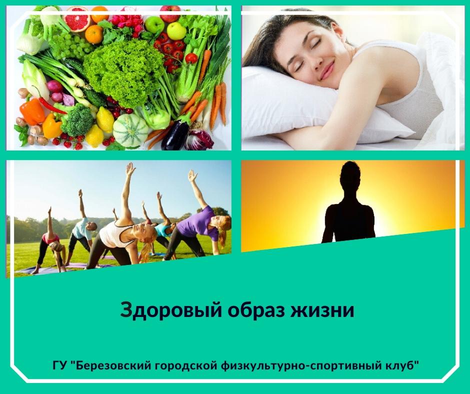 Здоровый образ жизни: определение. что такое здоровый образ жизни и его составляющие
