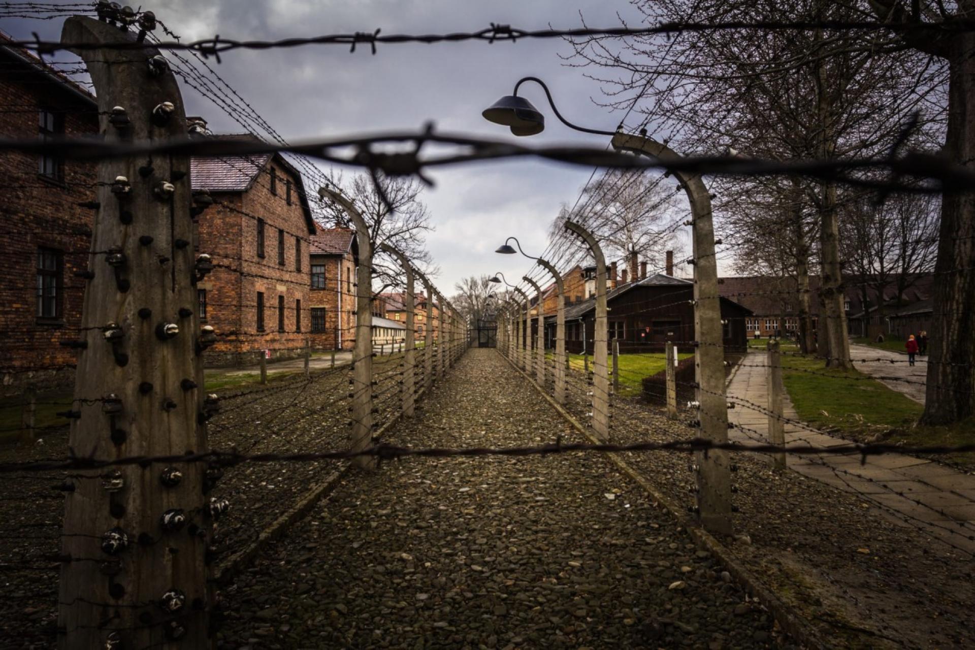 Дети и холокост — википедия