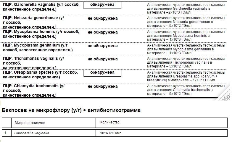 Не только пцр. какие бывают тесты на коронавирус и чем они отличаются
