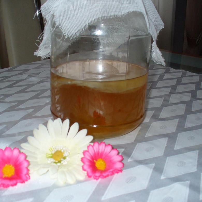 Комбуча чайный гриб | эффективное похудение. все виды диет