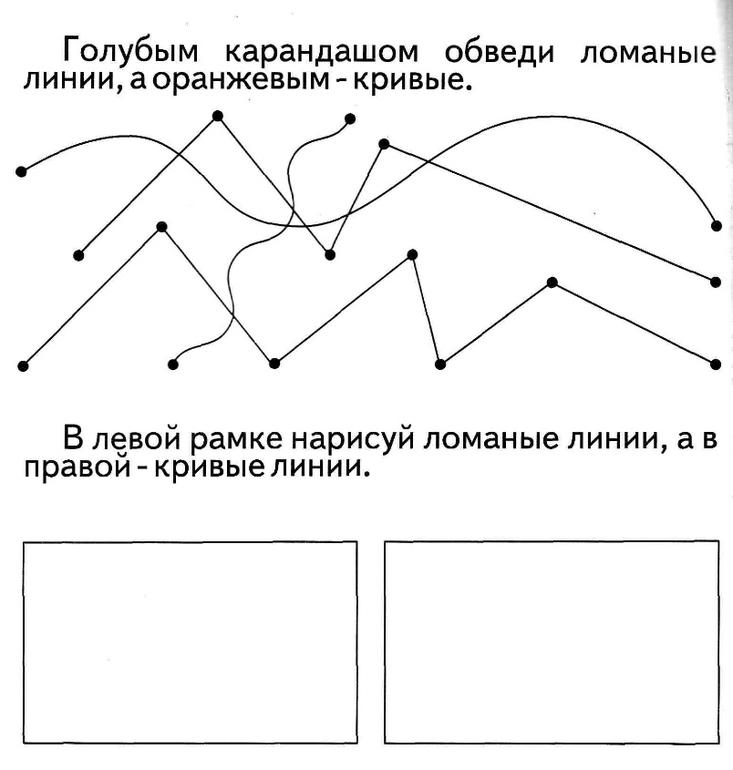 Прямая и ее части – что такое в математике, правило