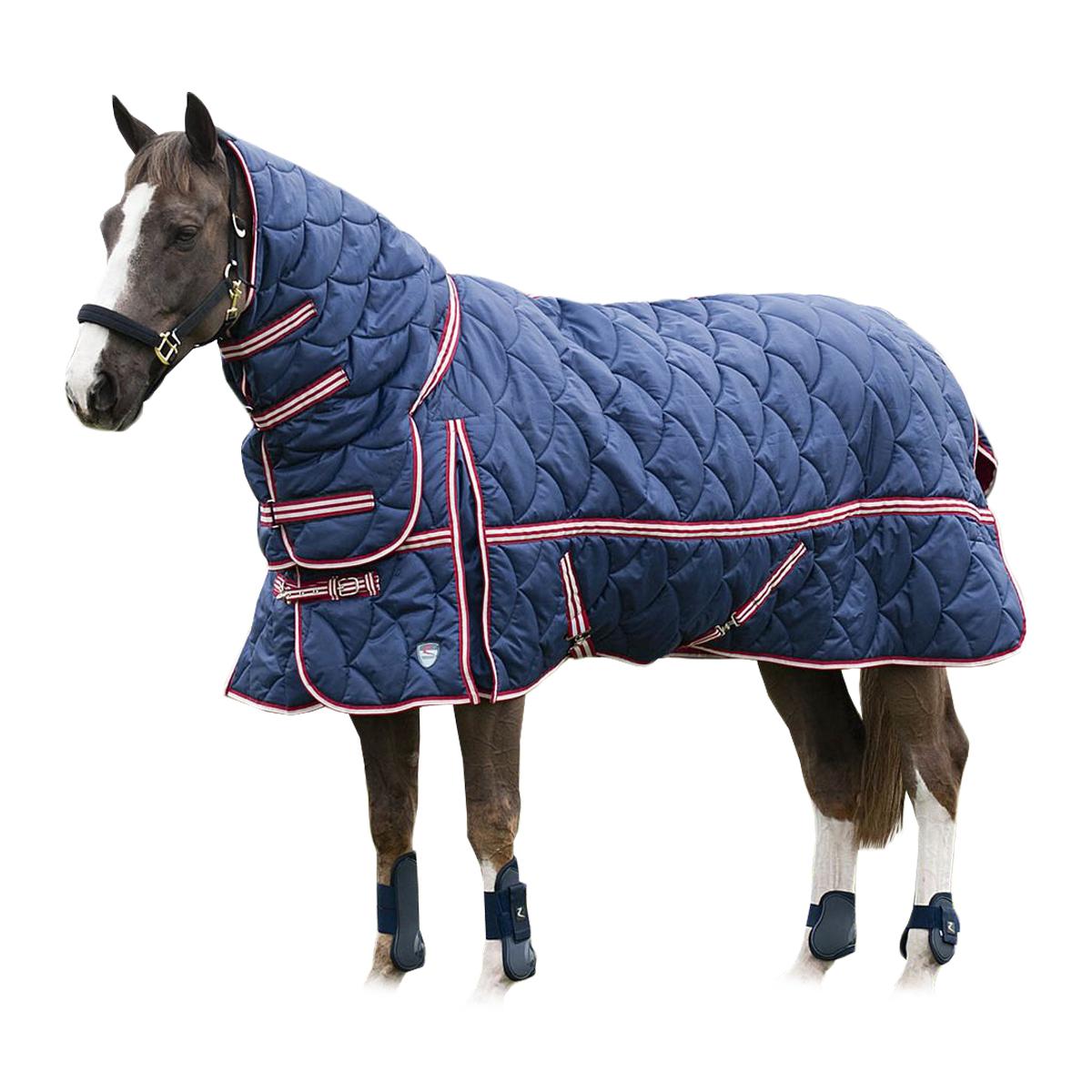 Попона для лошади (25 фото): что это такое? зимние флисовые и дождевые модели. как определить размеры попоны?