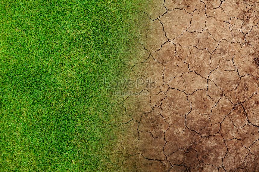 Опустынивание - вики