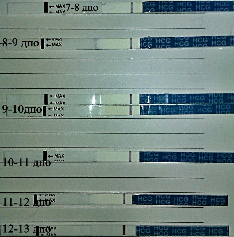 Дпо расшифровка: день после овуляции, его значение при планировании беременности, анализ на хгч