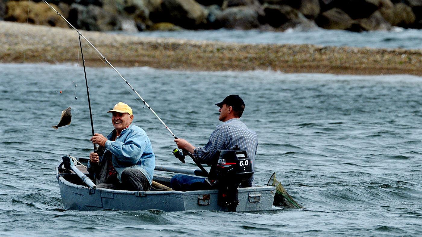 Лицензия на охоту: особенности оформления, виды и отзывы