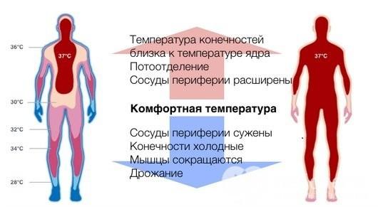 Лечебная гипертермия