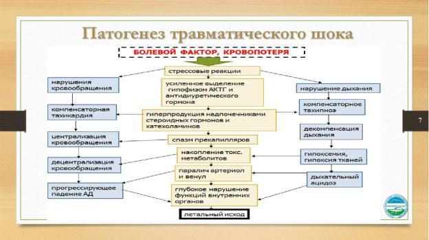Травматический шок: степени, признаки, первая помощь