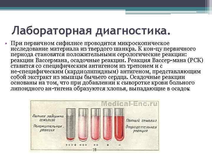 По вассерману кровь: что за анализ, как проводится, результаты – кровь на rw: что это такое, реакция вассермана, откуда берут, срок исполнения — оздоровительный spa-центр «панацея»