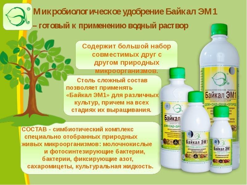 Эм-препараты в органическом овощеводстве. эффективные микроорганизмы — ботаничка.ru