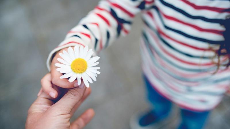 Что такое «щедрость души»