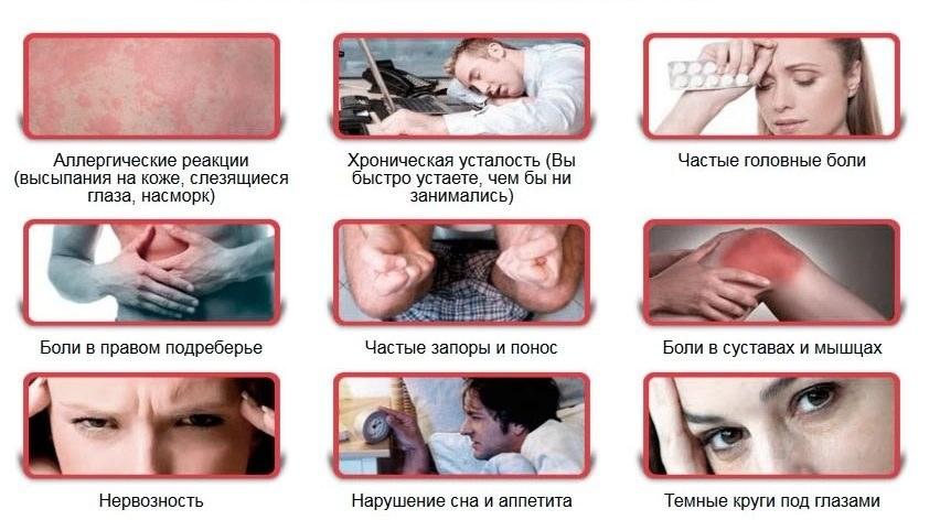 Лечение глистов у человека, медикаменты и схема лечения