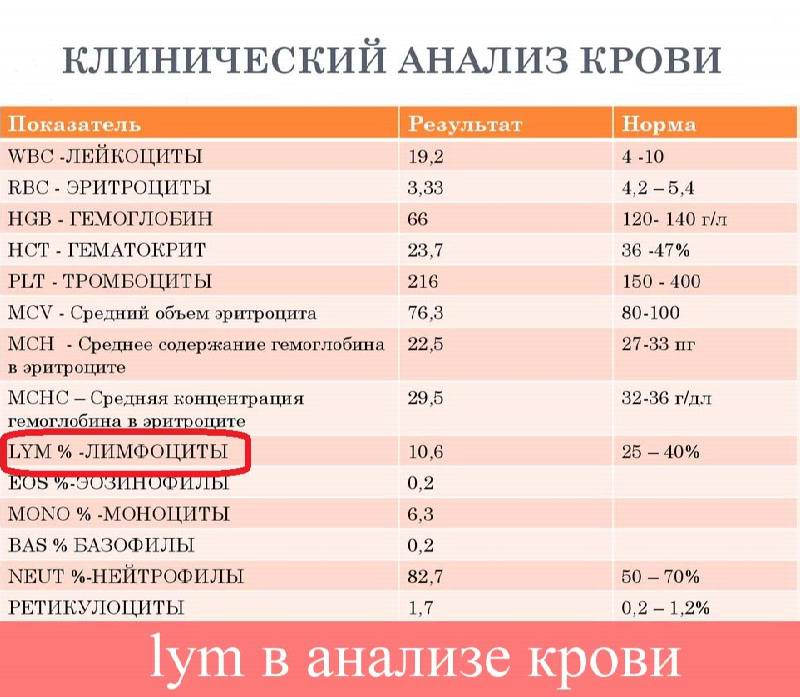 ✅ wbc анализ крови расшифровка норма у мужчин - денталюкс.su