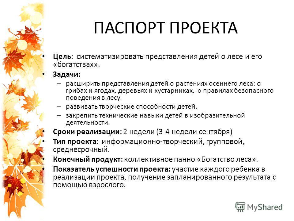 Паспорт проекта, пример оформления