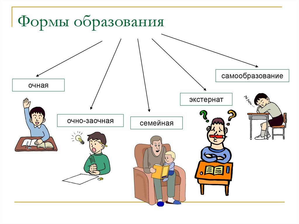 Семейное или заочное — какое обучение выбрать, чем отличаются формы образования