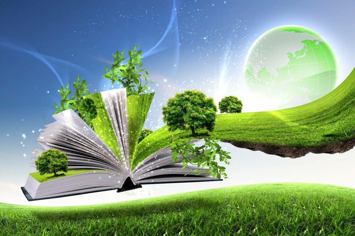 Экология   энциклопедия кругосвет