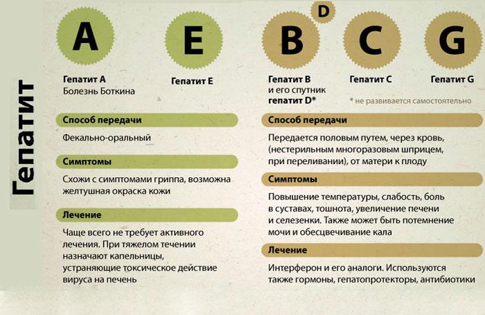 Гепатит б: симптомы и лечение у женщин и мужчин, первые признаки